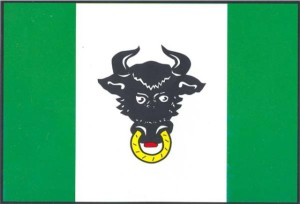 Vlajka Zubří